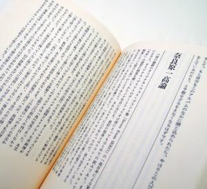 池田満寿夫 | 複眼の思考