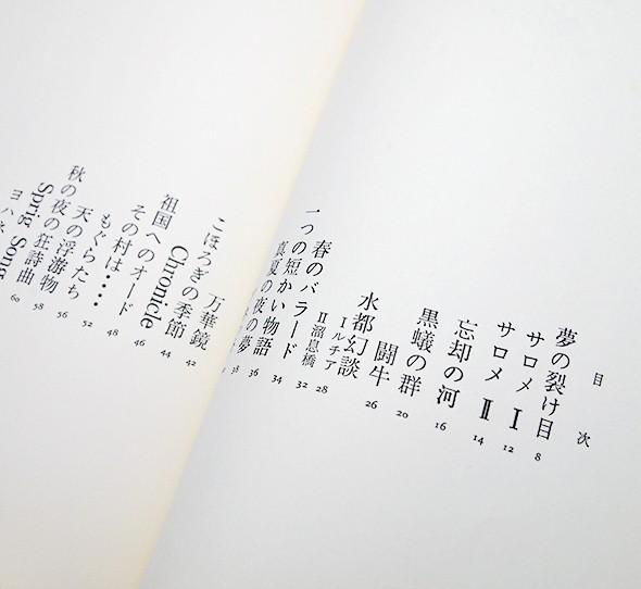 夢の裂け目 | 窪田般彌 詩集