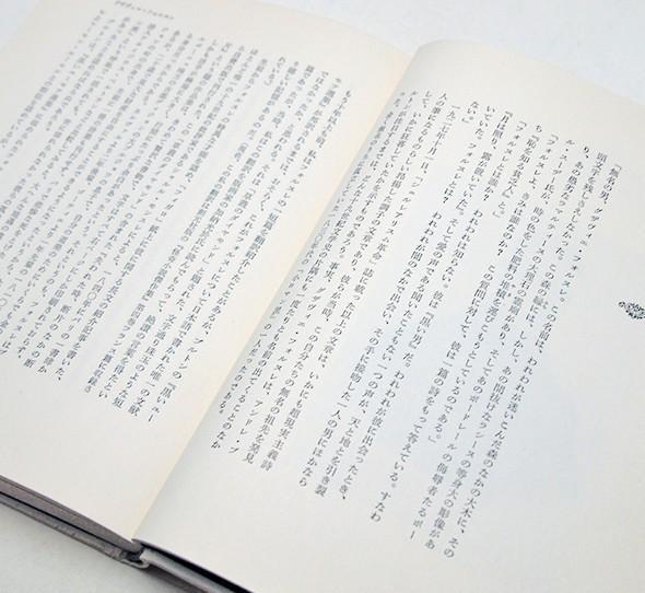 澁澤龍彦 | 悪魔のいる文学史