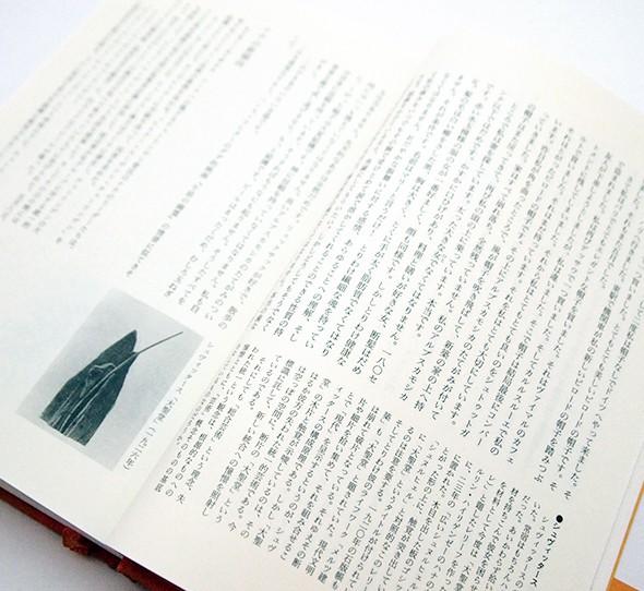 ダダ・ナチ ドイツ・悲劇の誕生 3冊揃 | 平井正