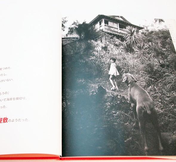 たかちゃんとぼく | ベティ・ジーン・リフトン、細江英公