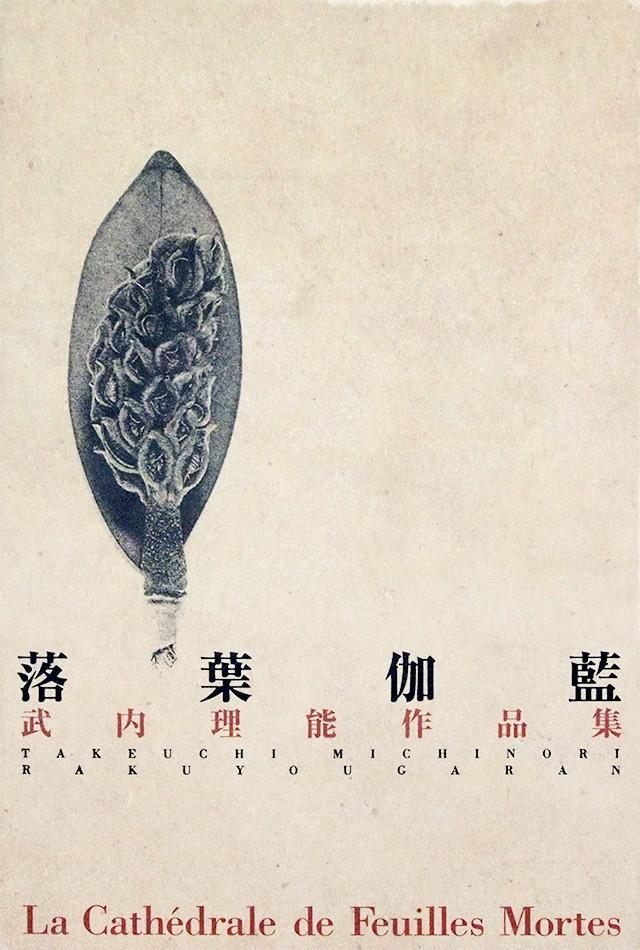 落葉伽藍―武内理能作品集