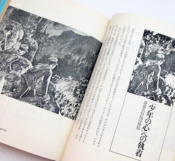 イラストレーション 地球を刺青する | 草森紳一 評論集