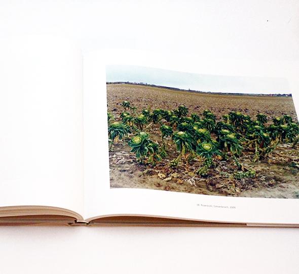 Landschaften und Gartenstucke | シモーネ・ニーヴェグ Simone Nieweg 写真集