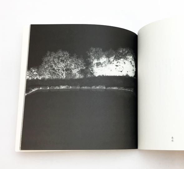 偶像と生贄 | ベルナール・フォコン