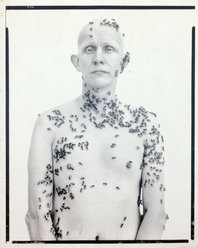 Richard Avedon Portraits | リチャード・アヴェドン 写真集