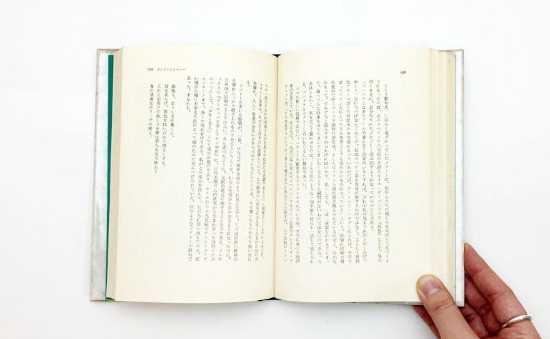 澁澤龍彦 | 洞窟の偶像