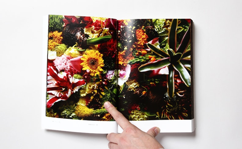 植物図鑑 Encyclopedia of Flowers II | 東信、椎木俊介