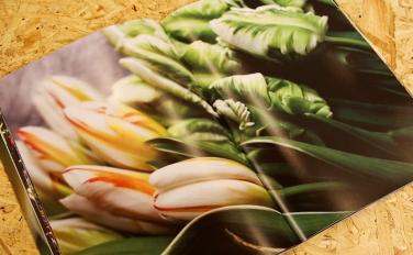 生活にもっと花を。THE LITTLE SHOP OF FLOWERSのZINEをウェブストアでもご購入いただけます
