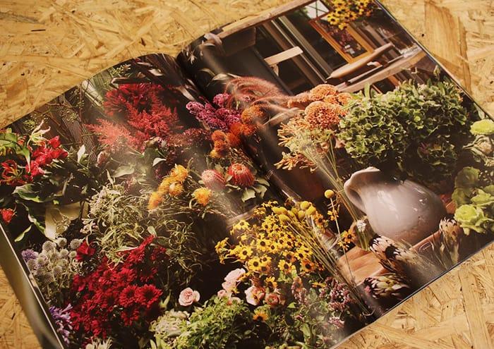 the little shop flowers