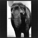 Moriyama Zoo No.1 Tribute to Daido Moriyama | 森山大道