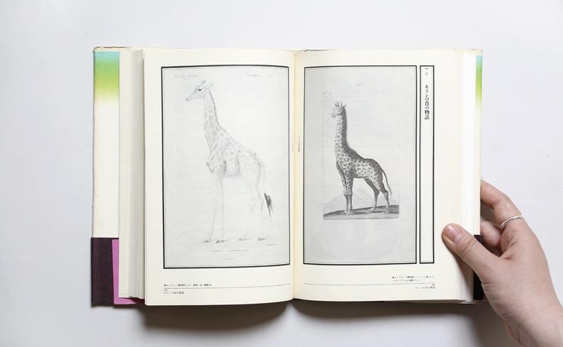 図鑑の博物誌 | 荒俣宏