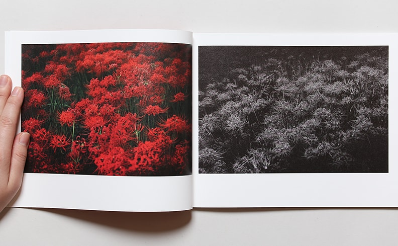 Red Water | 野村恵子
