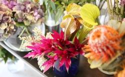 【duft(ドゥフト)】人と、花と心が交うフラワーショップ