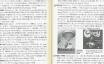 アフリカン・アメリカン スラング辞典 (改訂版) | 泉山 真奈美