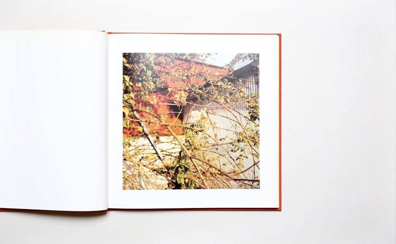 William Eggleston 2 1/4 | ウィリアム・エグルストン写真集