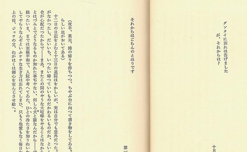 黒鳥館戦後日記 西荻窪の青春 | 中井英夫
