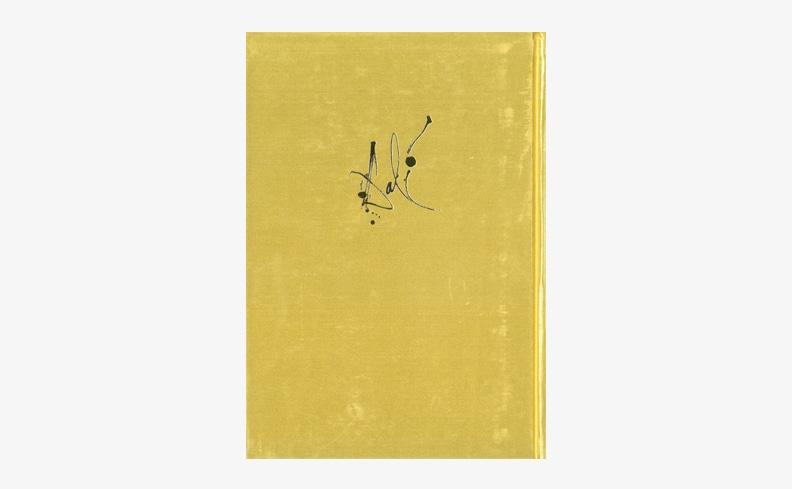 ダリとダリ 自分自身への公開状 | サルバドール・ダリ エッセイ集