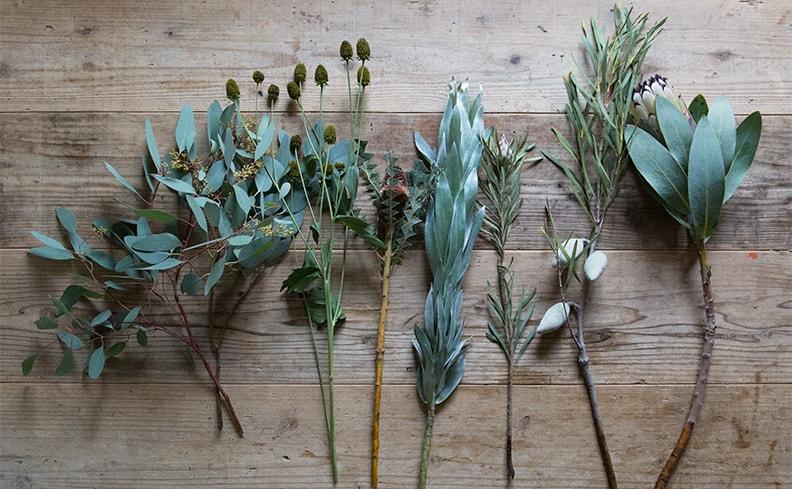 季節の植物で作るスワッグ | ふたつの月