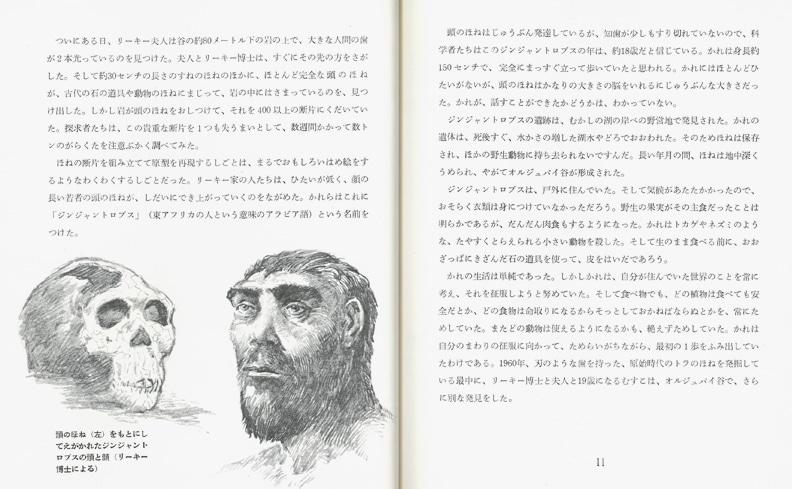 ファーストブック 石器時代の人類 | アリス・ディキンソン