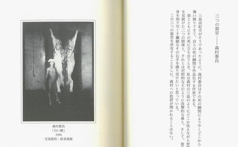 豚と福音 現代美術の純度へ | 南嶌宏