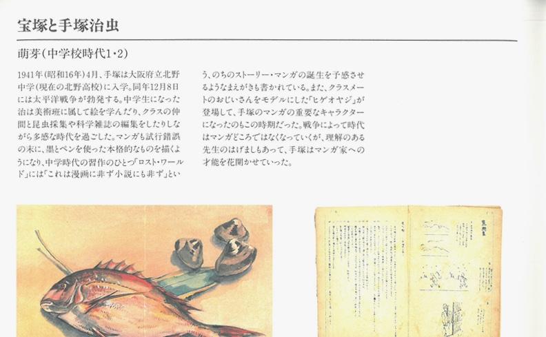 宝塚市立手塚治虫記念館 図録