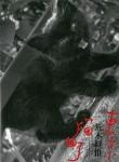 東京猫町 | 荒木経惟