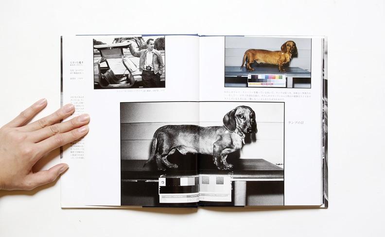 ピカソと愛犬ランプ あるダックスフントの冒険 | デイヴィッド・ダグラス・ダンカン