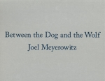Between the Dog and the Wolf | Joel Meyerowitz ジョエル・マイヤーウィッツ