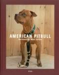 American Pitbull | Marc Joseph