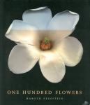 One Hundred Flowers | Harold Feinstein ハロルド・ファインスタイン