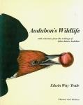 Audubon's Wild Life | Edwin Way Teale