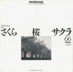 さくら・桜・サクラ66 | 東松照明作品集