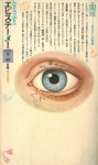 エピステーメー 4巻9号 | 眼球―まなざしの哲学