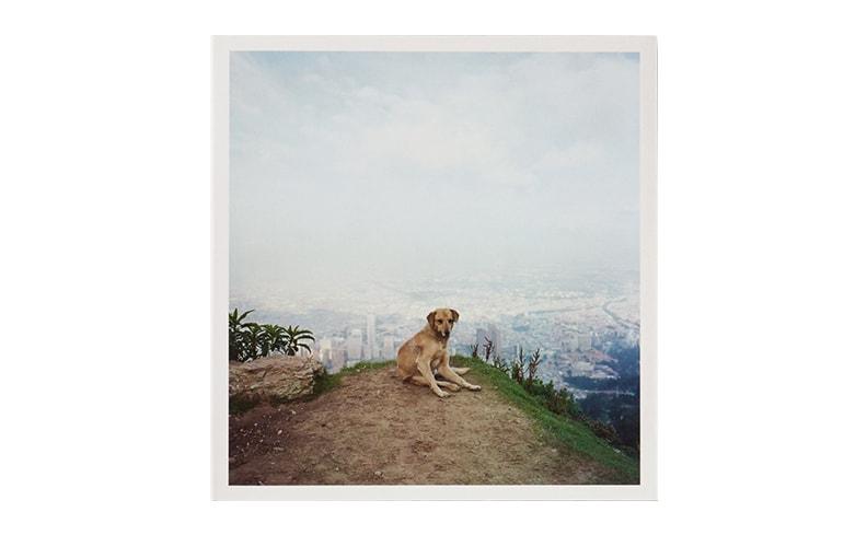 Dog Days Bogota   Alec Soth アレック・ソス スペシャルエディション