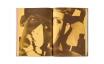 Raised by Wolves Bootleg | Jim Goldberg ジム・ゴールドバーグ