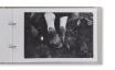 Magnam Analog Recovery | Robert Capa、Henri Cartier-Bresson