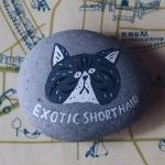 ペーパーウェイト Exotic Shorthair | オカタオカ