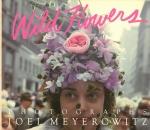 Wild Flowers | Joel Meyerowitz ジョエル・マイヤーウィッツ
